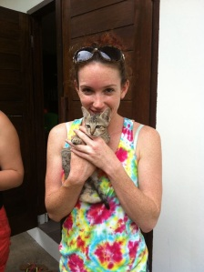 Cats at the Gili Islands in Indonesia